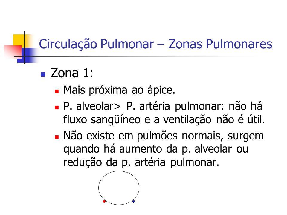 Circulação Pulmonar – Zonas Pulmonares Zona 1: Mais próxima ao ápice.
