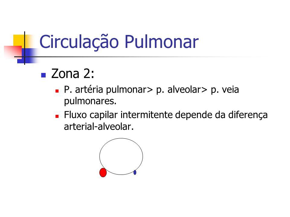 Circulação Pulmonar Zona 2: P.artéria pulmonar> p.