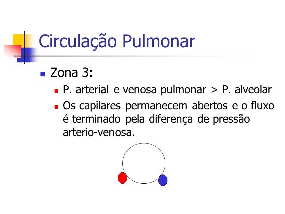 Circulação Pulmonar Zona 3: P.arterial e venosa pulmonar > P.