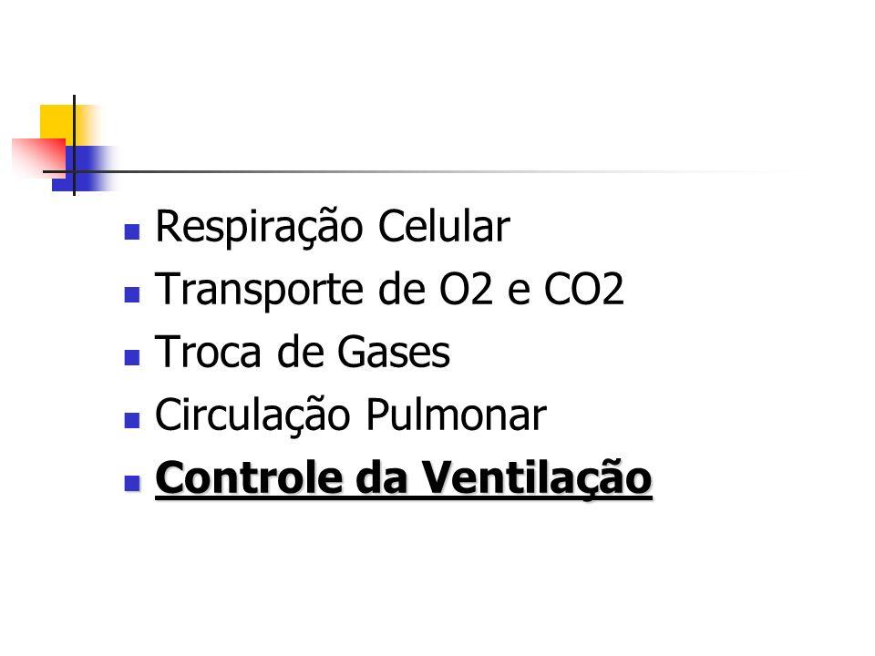 Respiração Celular Transporte de O2 e CO2 Troca de Gases Circulação Pulmonar Controle da Ventilação Controle da Ventilação