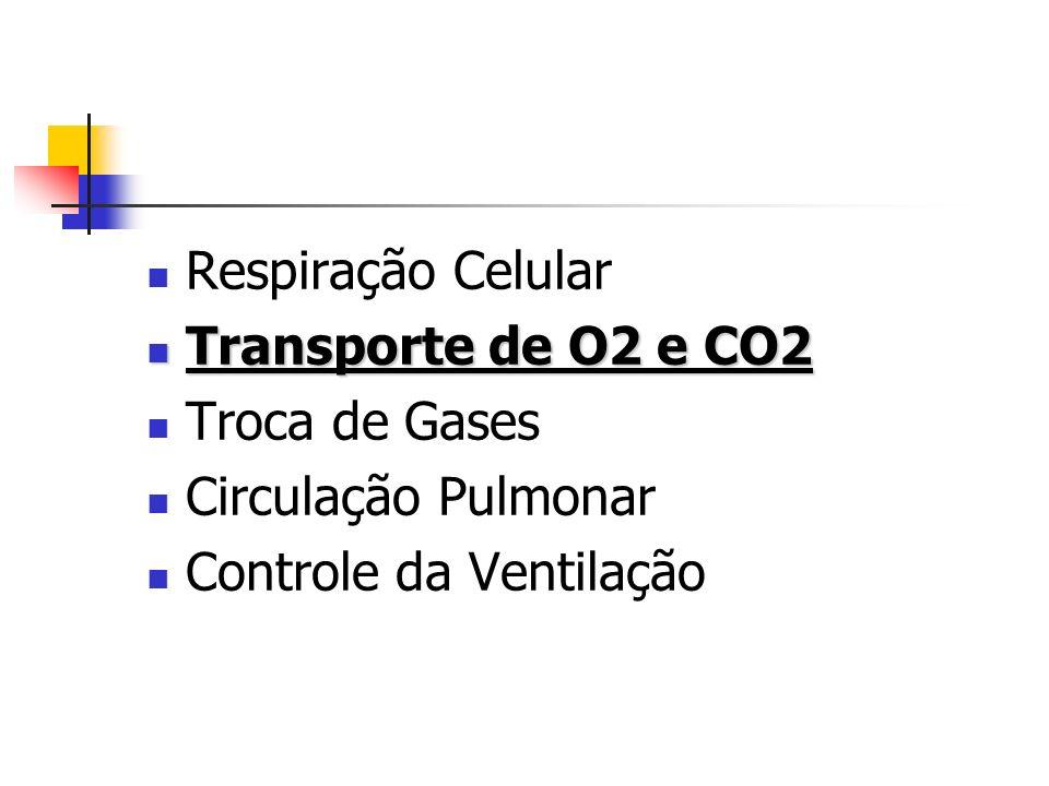 Respiração Celular Transporte de O2 e CO2 Transporte de O2 e CO2 Troca de Gases Circulação Pulmonar Controle da Ventilação