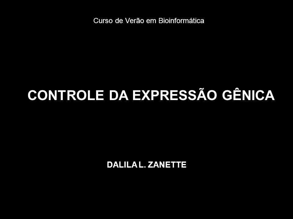 CONTROLE DA EXPRESSÃO GÊNICA DALILA L. ZANETTE Curso de Verão em Bioinformática