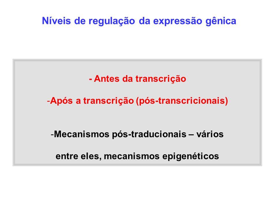 - Antes da transcrição -Após a transcrição (pós-transcricionais) -Mecanismos pós-traducionais – vários entre eles, mecanismos epigenéticos Níveis de r