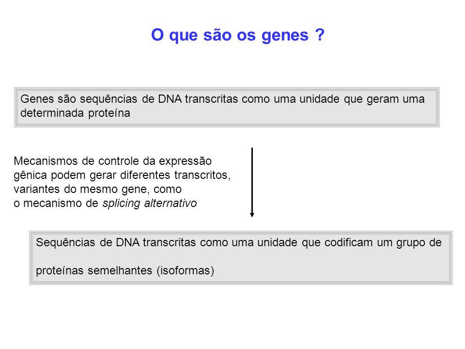 Sequências de DNA transcritas como uma unidade que codificam um grupo de proteínas semelhantes (isoformas) Mecanismos de controle da expressão gênica