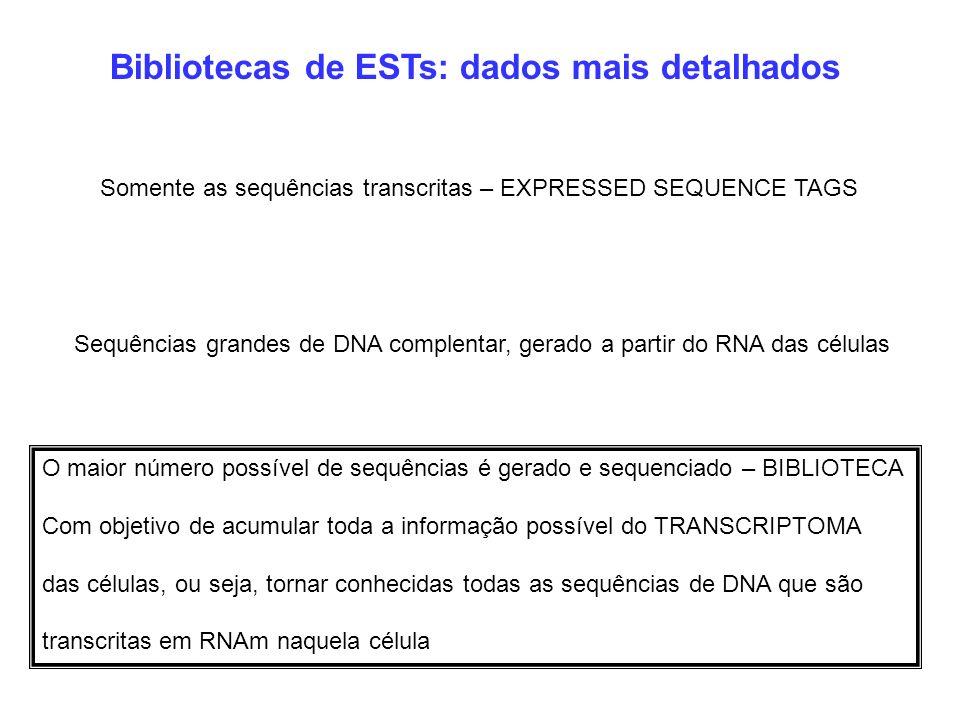 Bibliotecas de ESTs: dados mais detalhados Sequências grandes de DNA complentar, gerado a partir do RNA das células Somente as sequências transcritas