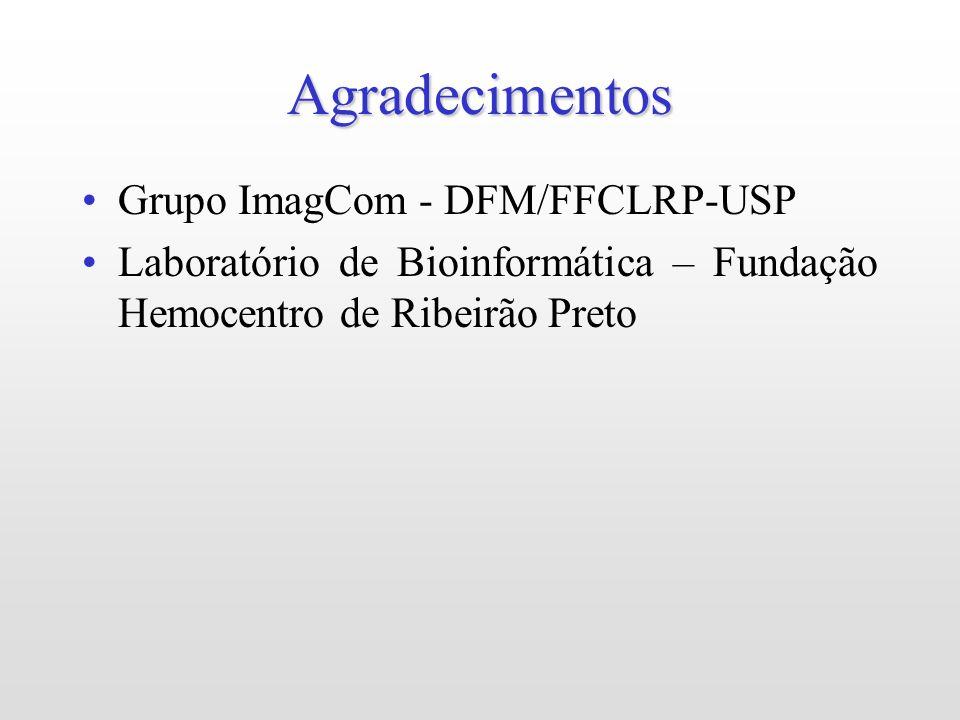 Agradecimentos Grupo ImagCom - DFM/FFCLRP-USP Laboratório de Bioinformática – Fundação Hemocentro de Ribeirão Preto