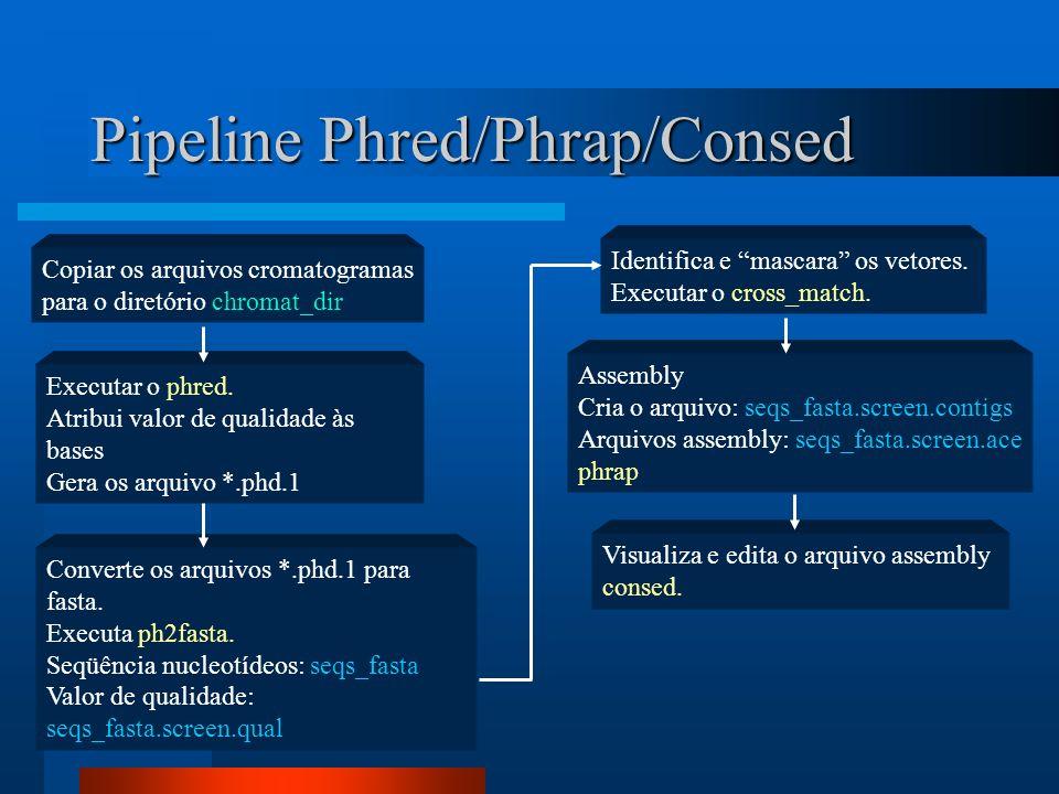 Pipeline Phred/Phrap/Consed Copiar os arquivos cromatogramas para o diretório chromat_dir Executar o phred. Atribui valor de qualidade às bases Gera o