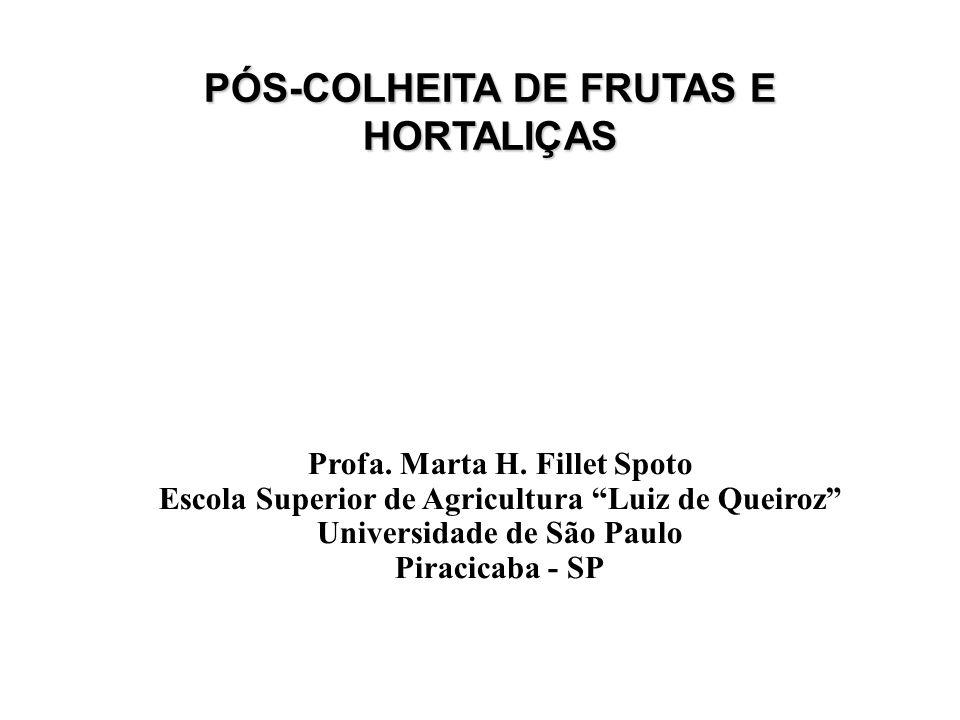 PÓS-COLHEITA DE FRUTAS E HORTALIÇAS Profa. Marta H. Fillet Spoto Escola Superior de Agricultura Luiz de Queiroz Universidade de São Paulo Piracicaba -