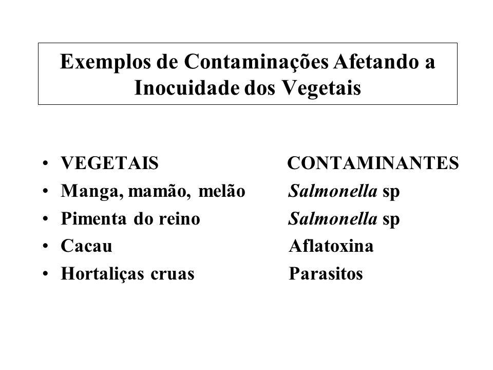 Exemplos de Contaminações Afetando a Inocuidade dos Vegetais VEGETAIS CONTAMINANTES Manga, mamão, melãoSalmonella sp Pimenta do reinoSalmonella sp Cac