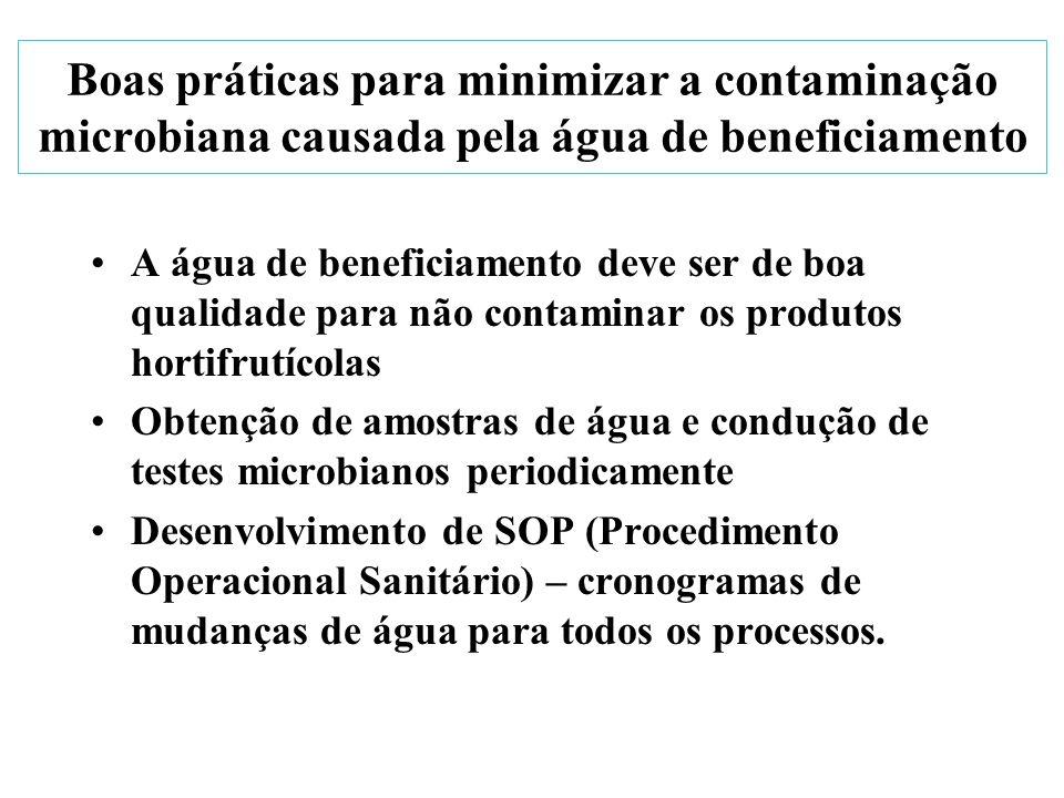 Boas práticas para minimizar a contaminação microbiana causada pela água de beneficiamento A água de beneficiamento deve ser de boa qualidade para não