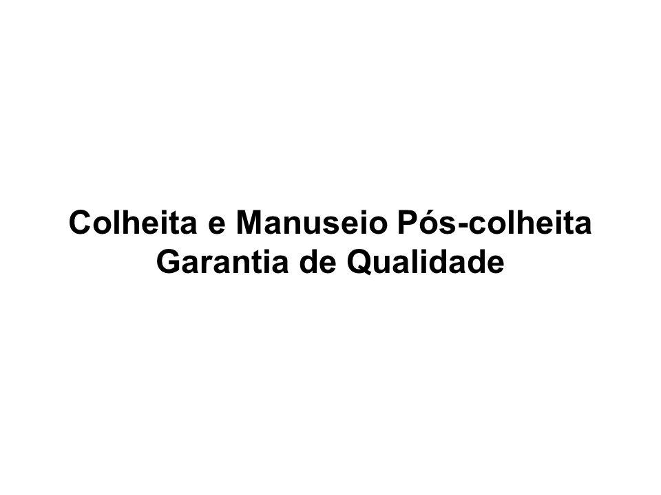 TRATAMENTOS ESPECIAIS Quarentenários: Frutos destinados à exportação - manga, mamão, melão.