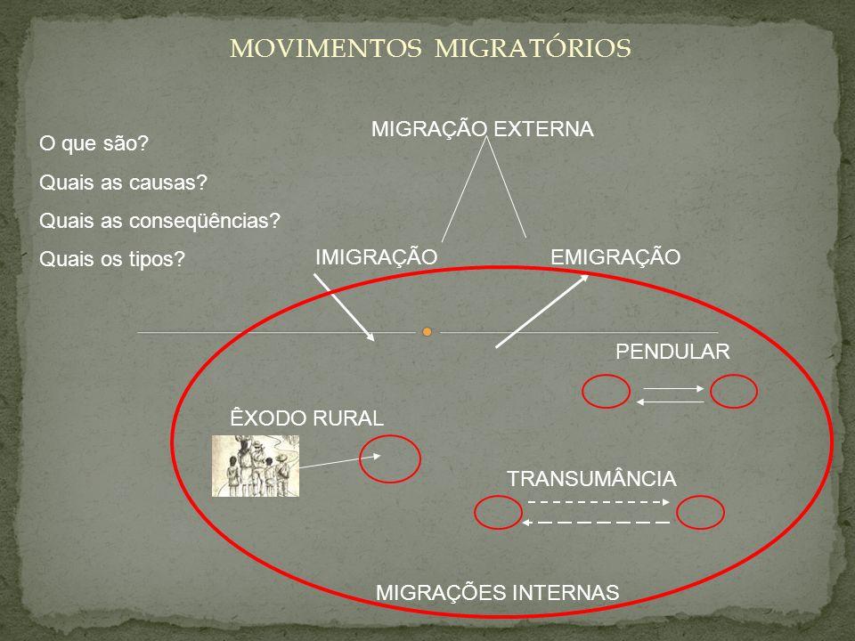 MOVIMENTOS MIGRATÓRIOS IMIGRAÇÃOEMIGRAÇÃO MIGRAÇÃO EXTERNA MIGRAÇÕES INTERNAS ÊXODO RURAL TRANSUMÂNCIA PENDULAR O que são? Quais as causas? Quais as c