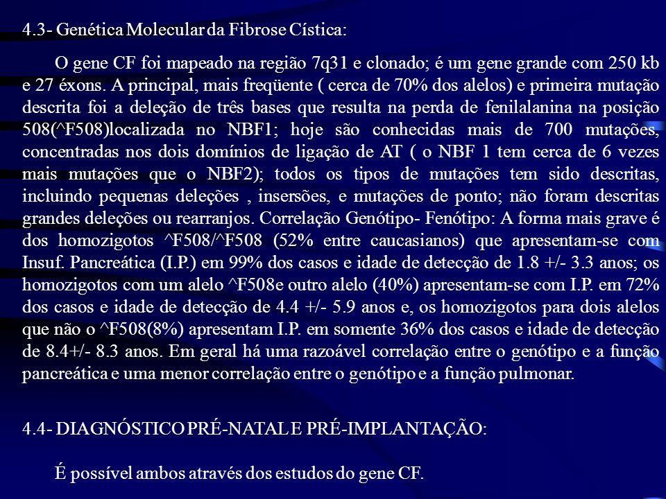 4.3- Genética Molecular da Fibrose Cística: O gene CF foi mapeado na região 7q31 e clonado; é um gene grande com 250 kb e 27 éxons. A principal, mais