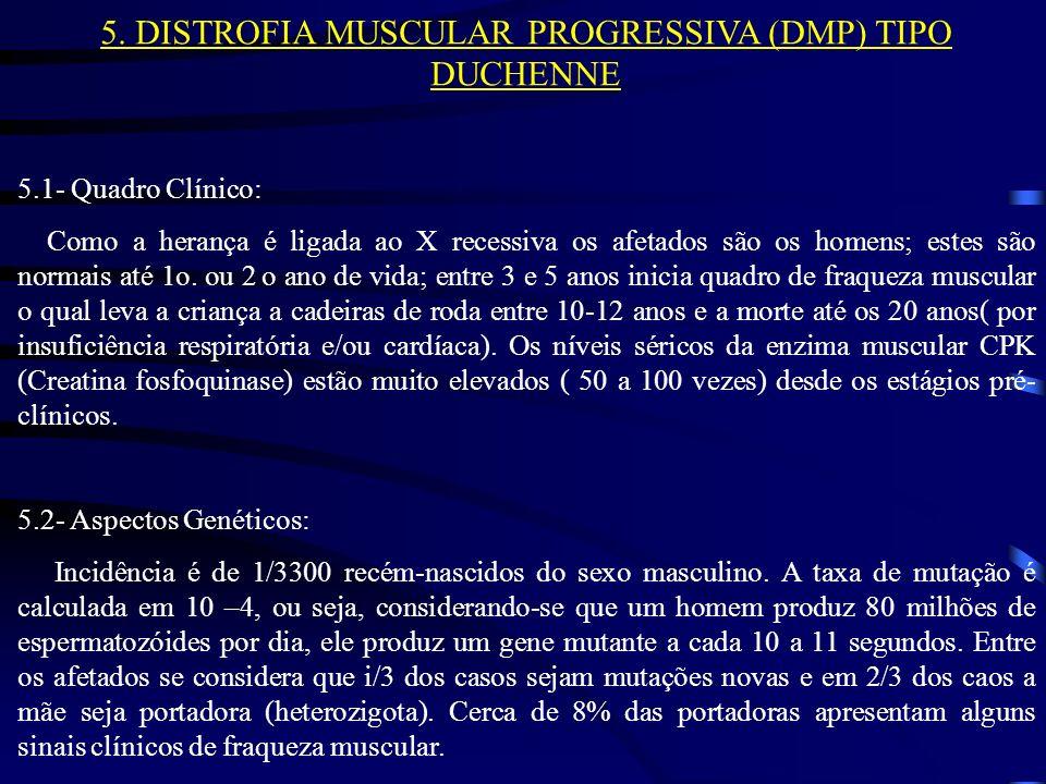 5. DISTROFIA MUSCULAR PROGRESSIVA (DMP) TIPO DUCHENNE 5.1- Quadro Clínico: Como a herança é ligada ao X recessiva os afetados são os homens; estes são