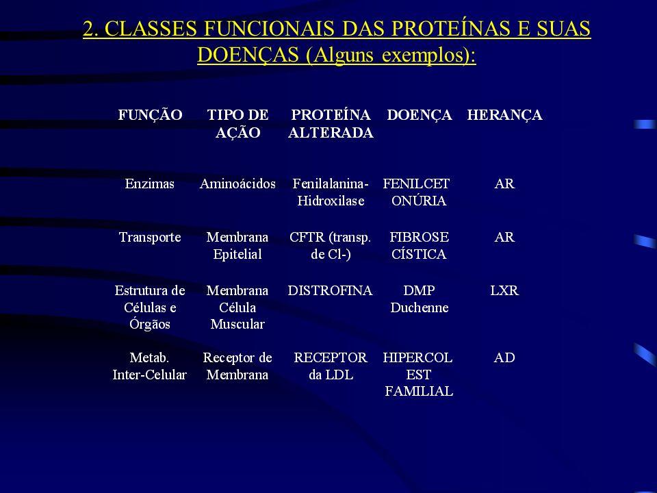 2. CLASSES FUNCIONAIS DAS PROTEÍNAS E SUAS DOENÇAS (Alguns exemplos):