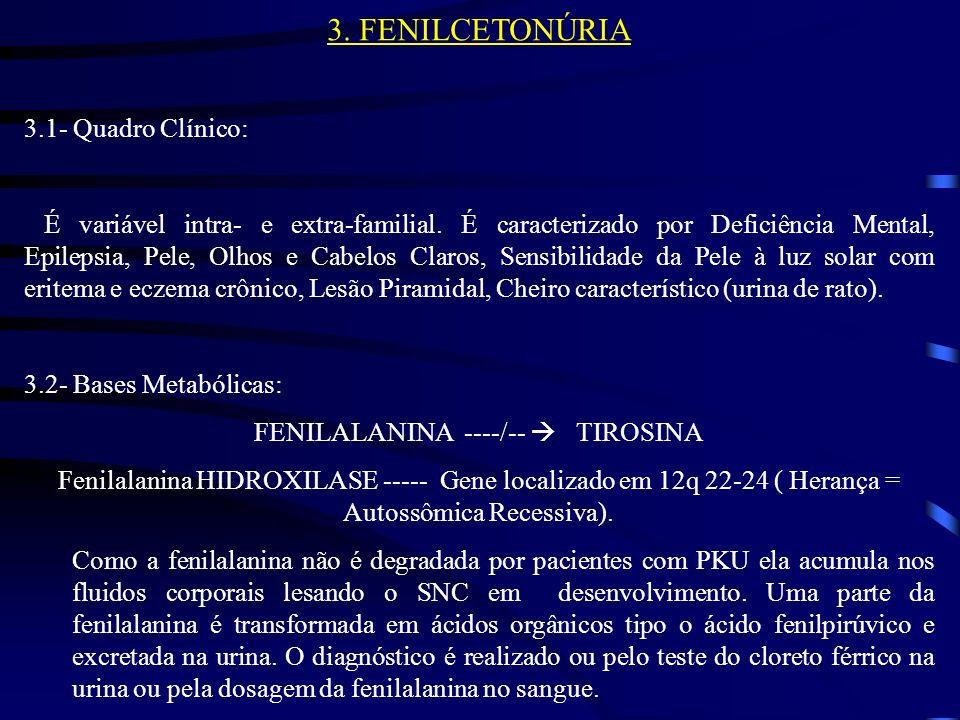 3.3- Triagem Neonatal e Tratamento: Em virtude de haver tratamento efetivo a triagem neonatal é realizada em muitas regiões do mundo, inclusive algumas do Brasil; pode ser feita pelo teste bacteriológico de Guthrie ou pela dosagem da fenilalanina no sangue (valor normal até 4 mg%).