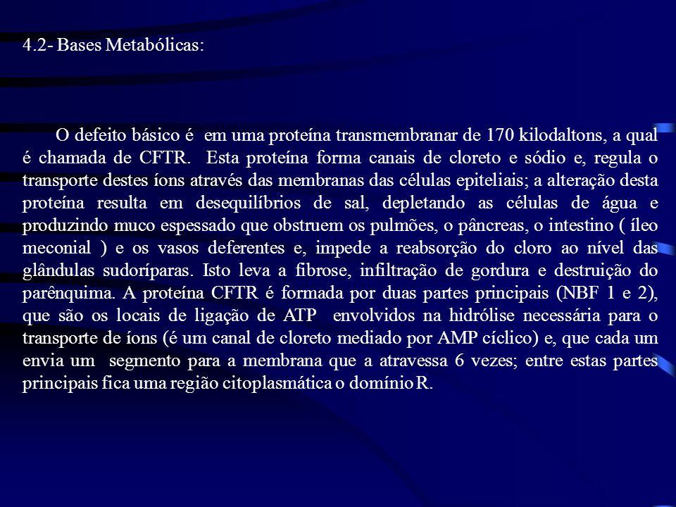 4.2- Bases Metabólicas: O defeito básico é em uma proteína transmembranar de 170 kilodaltons, a qual é chamada de CFTR. Esta proteína forma canais de