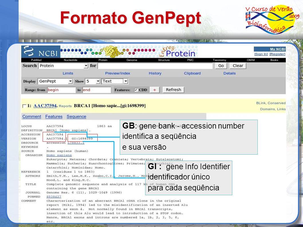 Formato GenPept GB: gene bank - accession number identifica a seqüência e sua versão GI : gene Info Identifier identificador único para cada seqüência