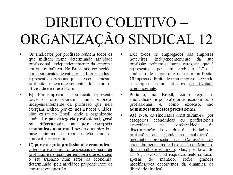 DIREITO COLETIVO – ORGANIZAÇÃO SINDICAL 12 Os sindicatos por profissão reúnem todos os que militam numa determinada atividade profissional, independen