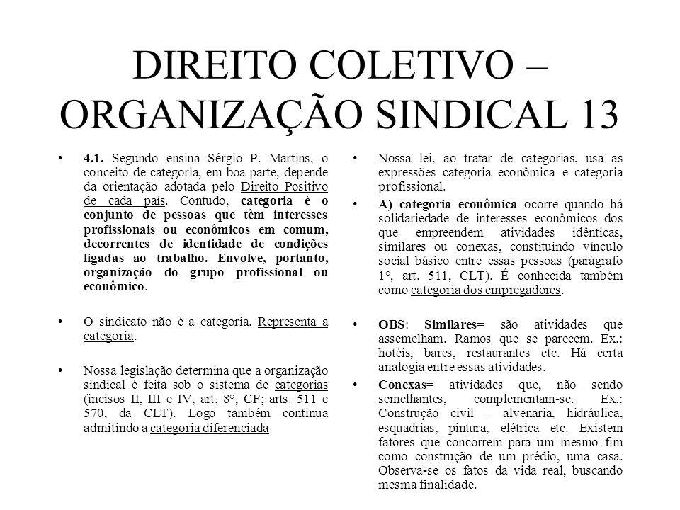 DIREITO COLETIVO – ORGANIZAÇÃO SINDICAL 13 4.1. Segundo ensina Sérgio P. Martins, o conceito de categoria, em boa parte, depende da orientação adotada