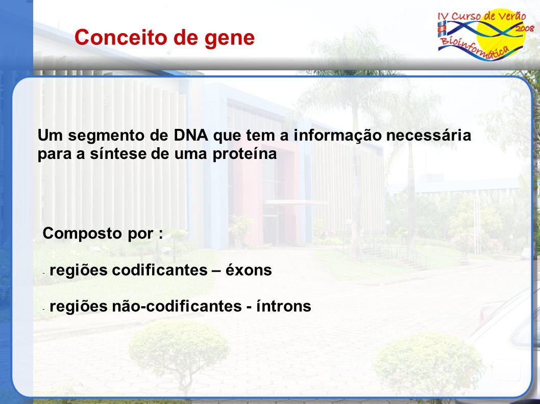 Conceito de gene Um segmento de DNA que tem a informação necessária para a síntese de uma proteína Composto por : - regiões codificantes – éxons - reg