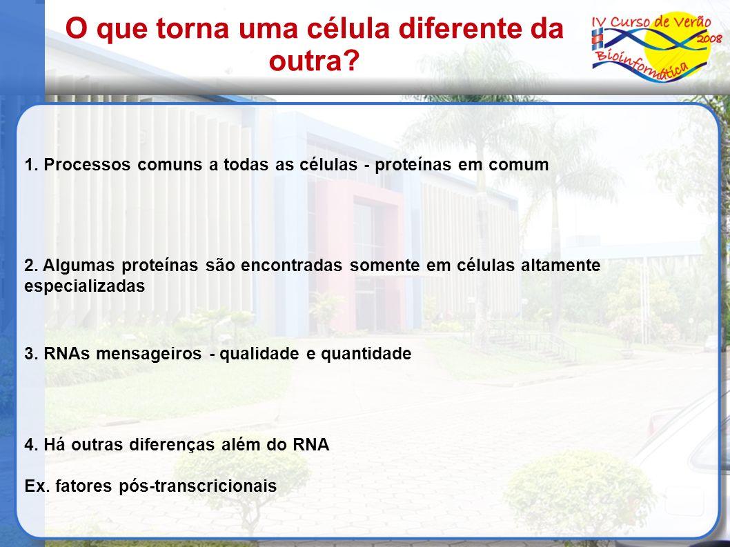 1. Processos comuns a todas as células - proteínas em comum 2. Algumas proteínas são encontradas somente em células altamente especializadas 3. RNAs m