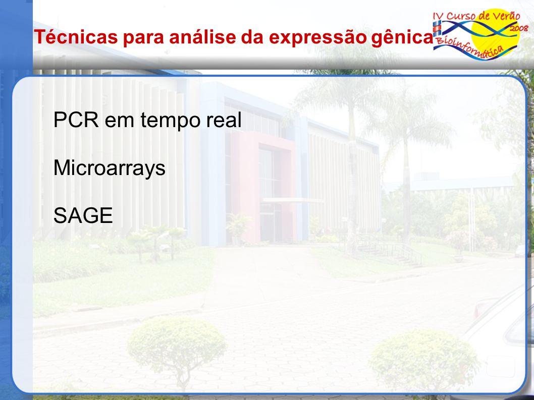 Técnicas para análise da expressão gênica PCR em tempo real Microarrays SAGE