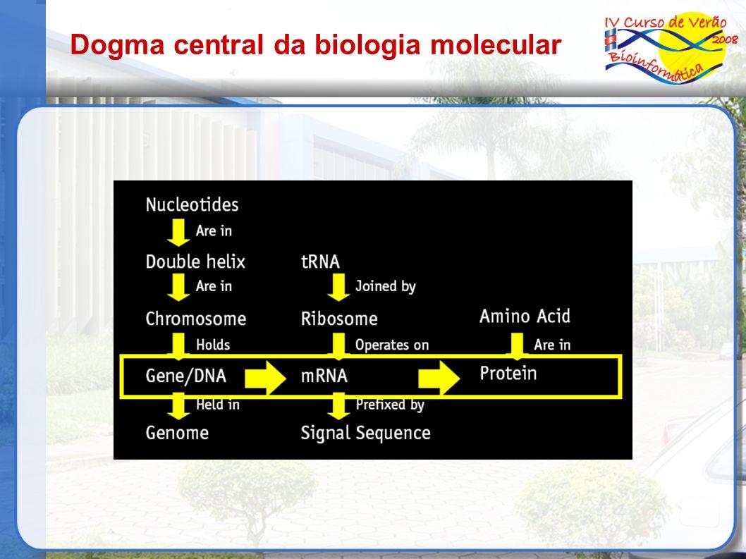 Diversidade de genes Diversidade de genes – genoma Splicing alternativo – isoformas Mutações que alteram a proteína formada