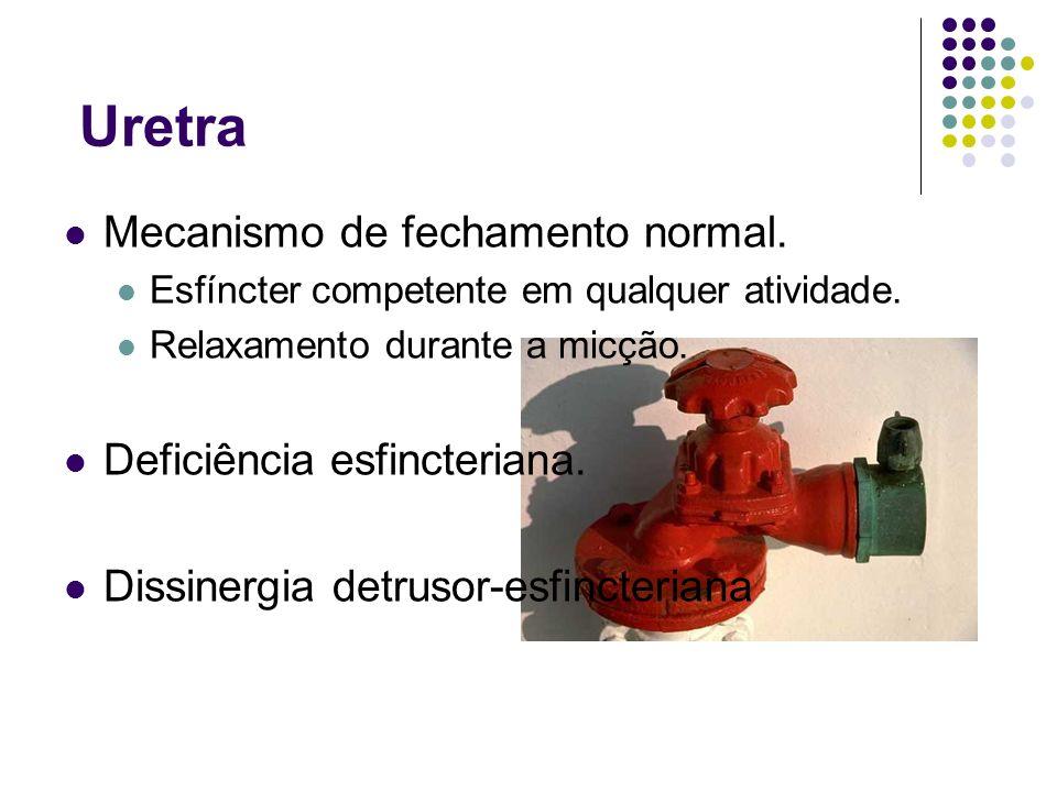 Uretra Mecanismo de fechamento normal. Esfíncter competente em qualquer atividade. Relaxamento durante a micção. Deficiência esfincteriana. Dissinergi
