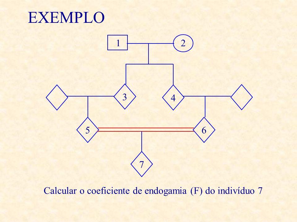 EXEMPLO 12 4 65 3 Calcular o coeficiente de endogamia (F) do indivíduo 7 7