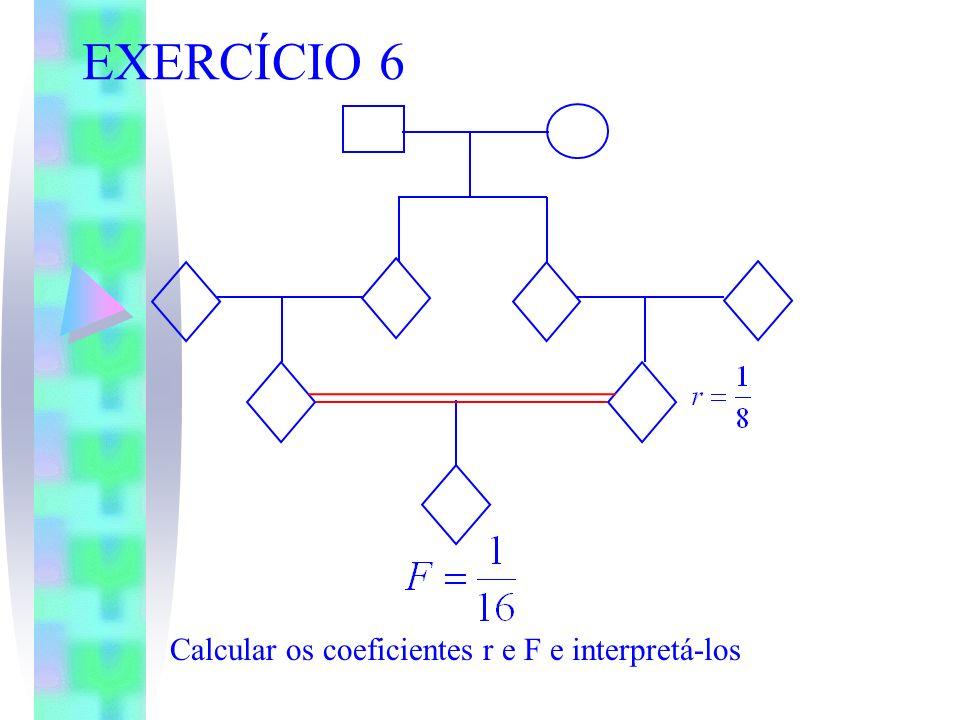 EXERCÍCIO 6 Calcular os coeficientes r e F e interpretá-los