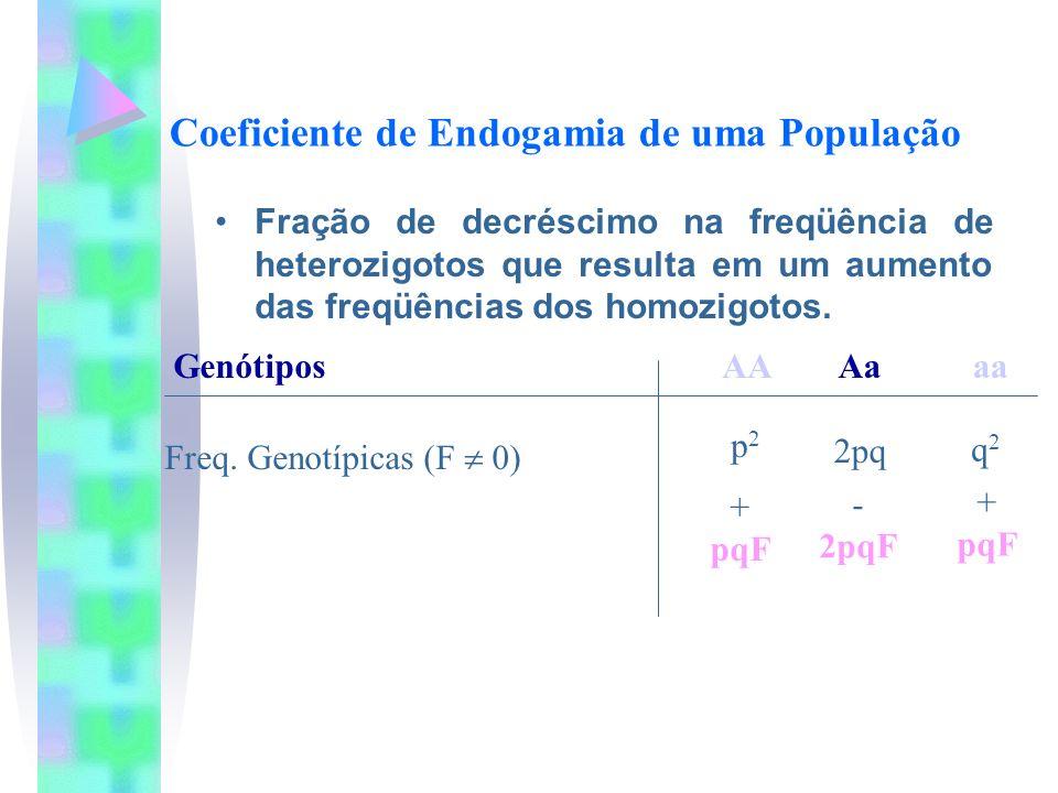 Coeficiente de Endogamia de uma População Fração de decréscimo na freqüência de heterozigotos que resulta em um aumento das freqüências dos homozigoto