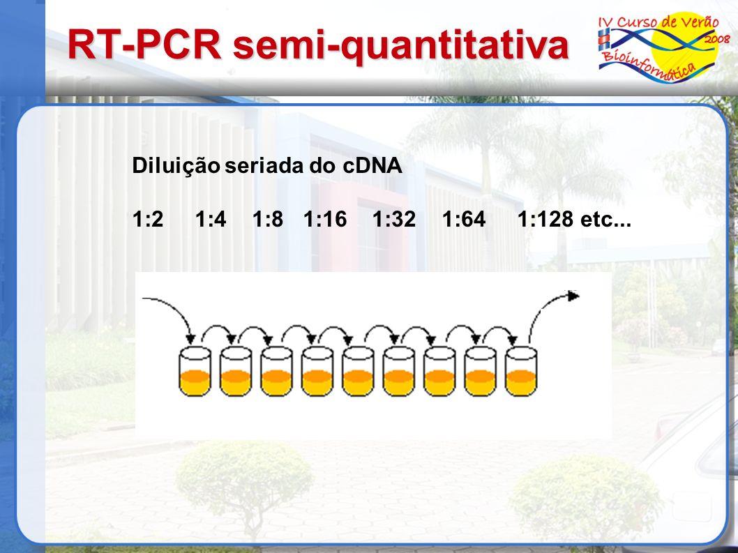 Diluição seriada do cDNA 1:2 1:4 1:8 1:16 1:32 1:64 1:128 etc... RT-PCR semi-quantitativa