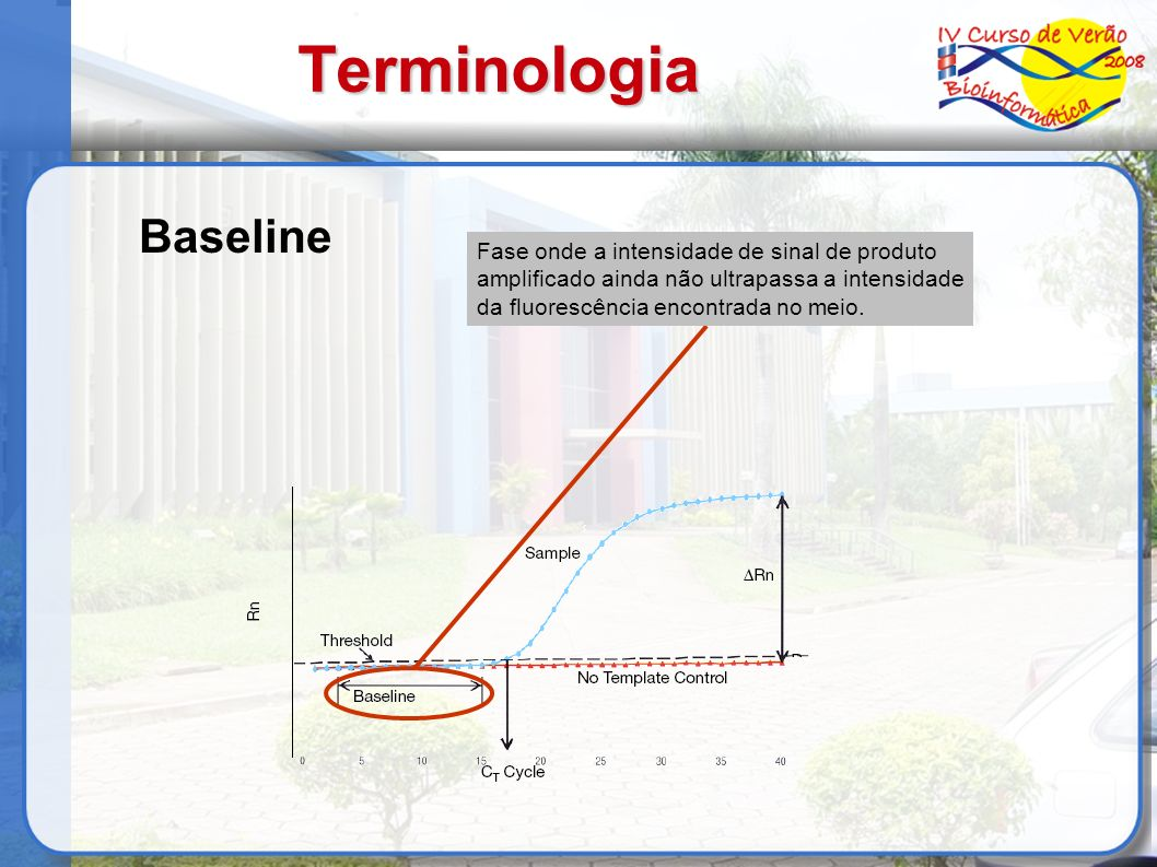 Terminologia Fase onde a intensidade de sinal de produto amplificado ainda não ultrapassa a intensidade da fluorescência encontrada no meio. Baseline
