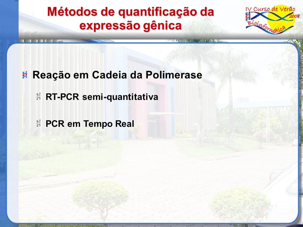 Reação em Cadeia da Polimerase RT-PCR semi-quantitativa PCR em Tempo Real Métodos de quantificação da expressão gênica