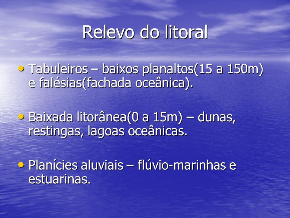 Relevo do litoral Tabuleiros – baixos planaltos(15 a 150m) e falésias(fachada oceânica). Tabuleiros – baixos planaltos(15 a 150m) e falésias(fachada o