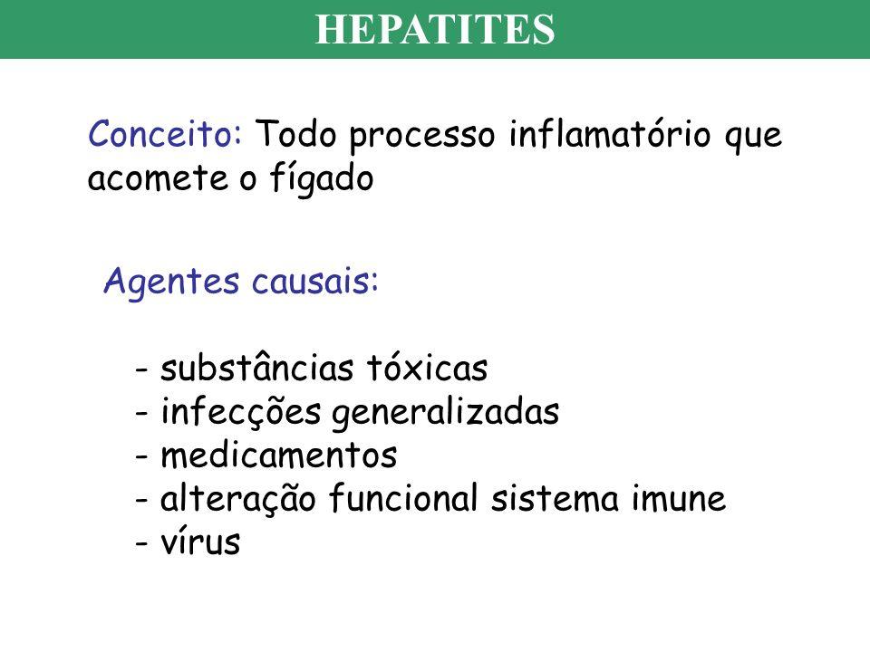 HEPATITES Conceito: Todo processo inflamatório que acomete o fígado Agentes causais: - substâncias tóxicas - infecções generalizadas - medicamentos -