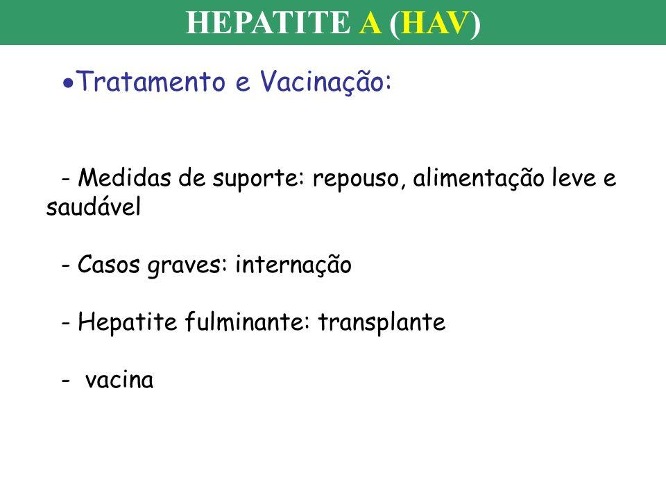 HEPATITE A (HAV) Tratamento e Vacinação: - Medidas de suporte: repouso, alimentação leve e saudável - Casos graves: internação - Hepatite fulminante: