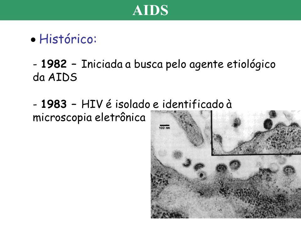 AIDS Histórico: - 1982 – Iniciada a busca pelo agente etiológico da AIDS - 1983 – HIV é isolado e identificado à microscopia eletrônica