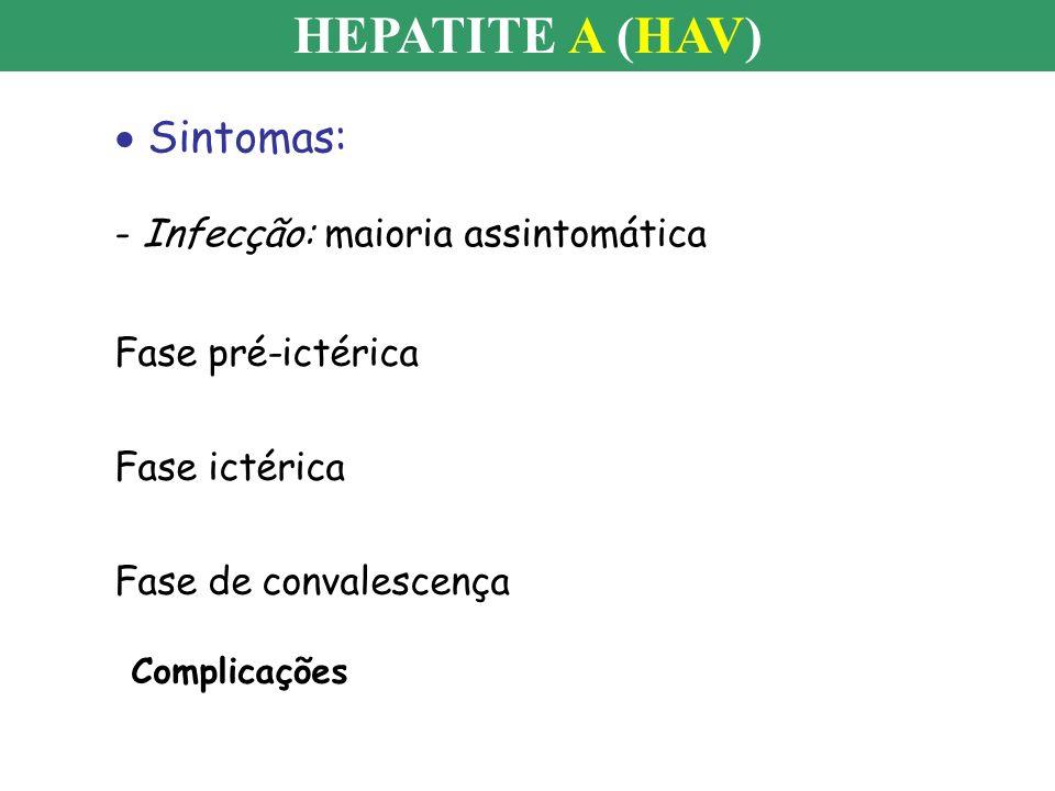HEPATITE A (HAV) Quadro ictérico apresentado durante infecção aguda pelo HAV