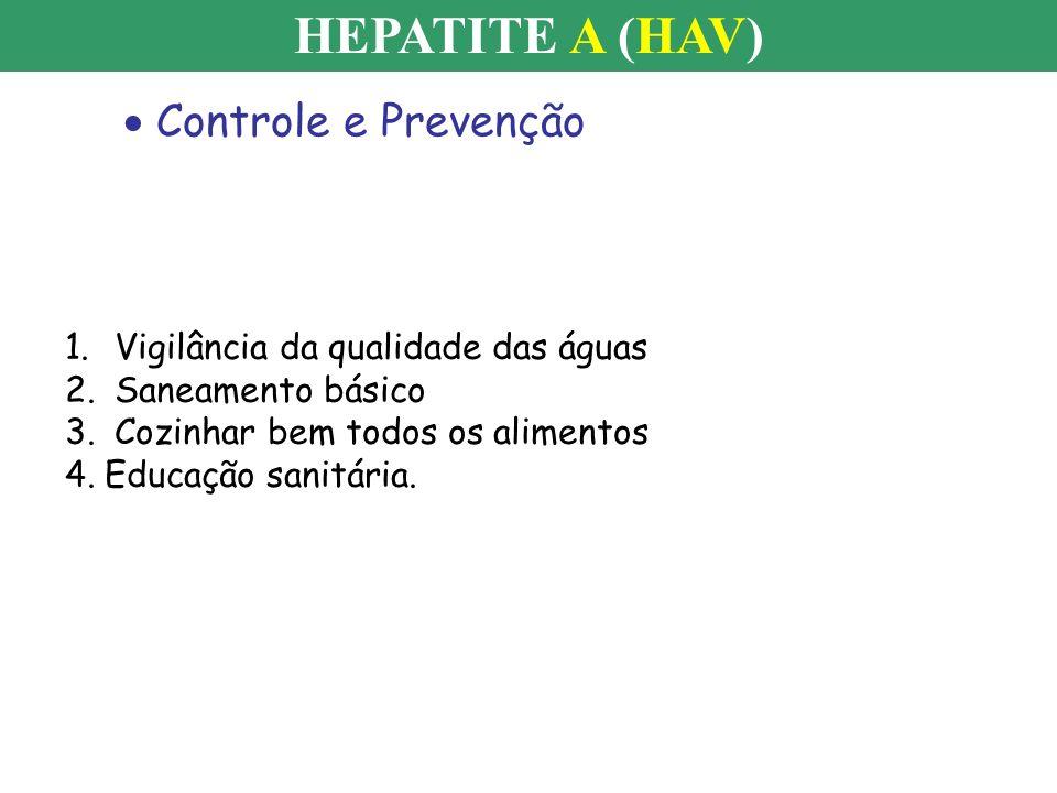 Controle e Prevenção HEPATITE A (HAV) 1. Vigilância da qualidade das águas 2. Saneamento básico 3. Cozinhar bem todos os alimentos 4.Educação sanitári