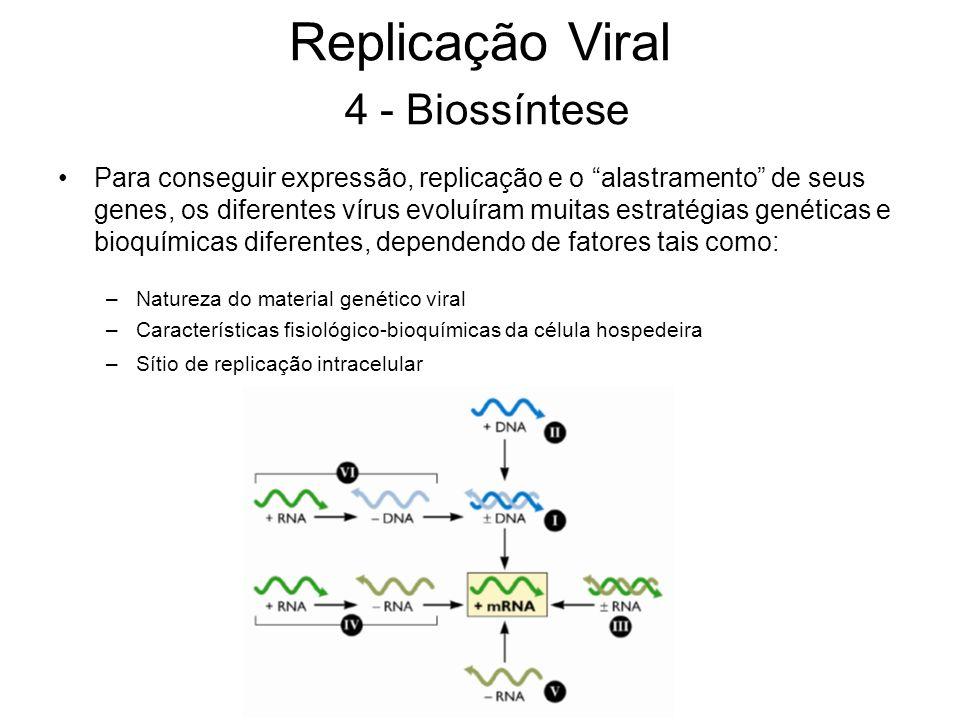 Para conseguir expressão, replicação e o alastramento de seus genes, os diferentes vírus evoluíram muitas estratégias genéticas e bioquímicas diferent