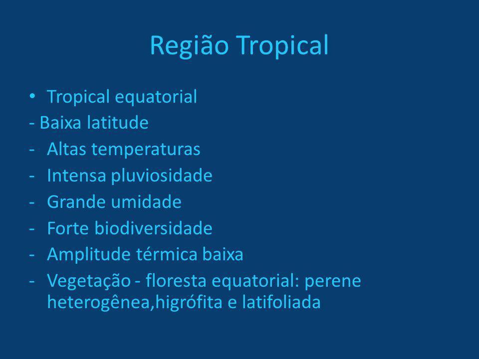 Região Tropical Tropical equatorial - Baixa latitude -Altas temperaturas -Intensa pluviosidade -Grande umidade -Forte biodiversidade -Amplitude térmic