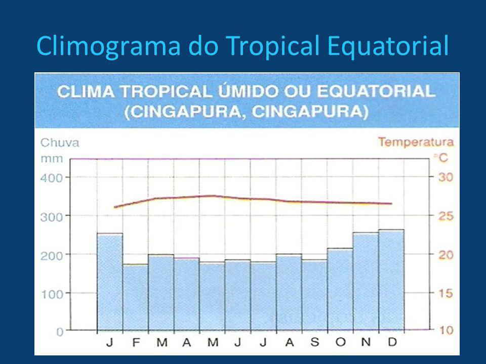 Climograma do Tropical Equatorial