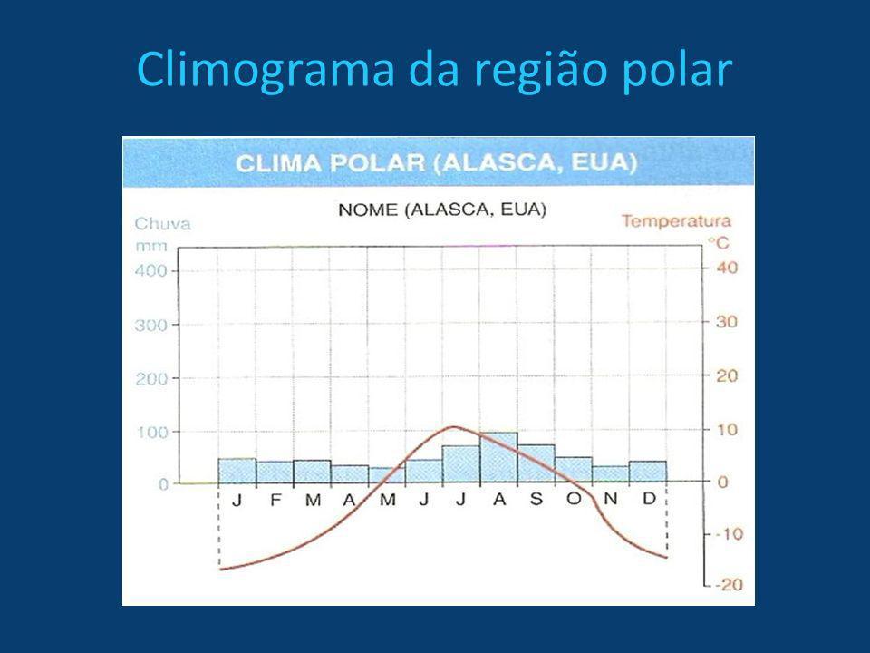 Região Tropical Tropical equatorial - Baixa latitude -Altas temperaturas -Intensa pluviosidade -Grande umidade -Forte biodiversidade -Amplitude térmica baixa -Vegetação - floresta equatorial: perene heterogênea,higrófita e latifoliada