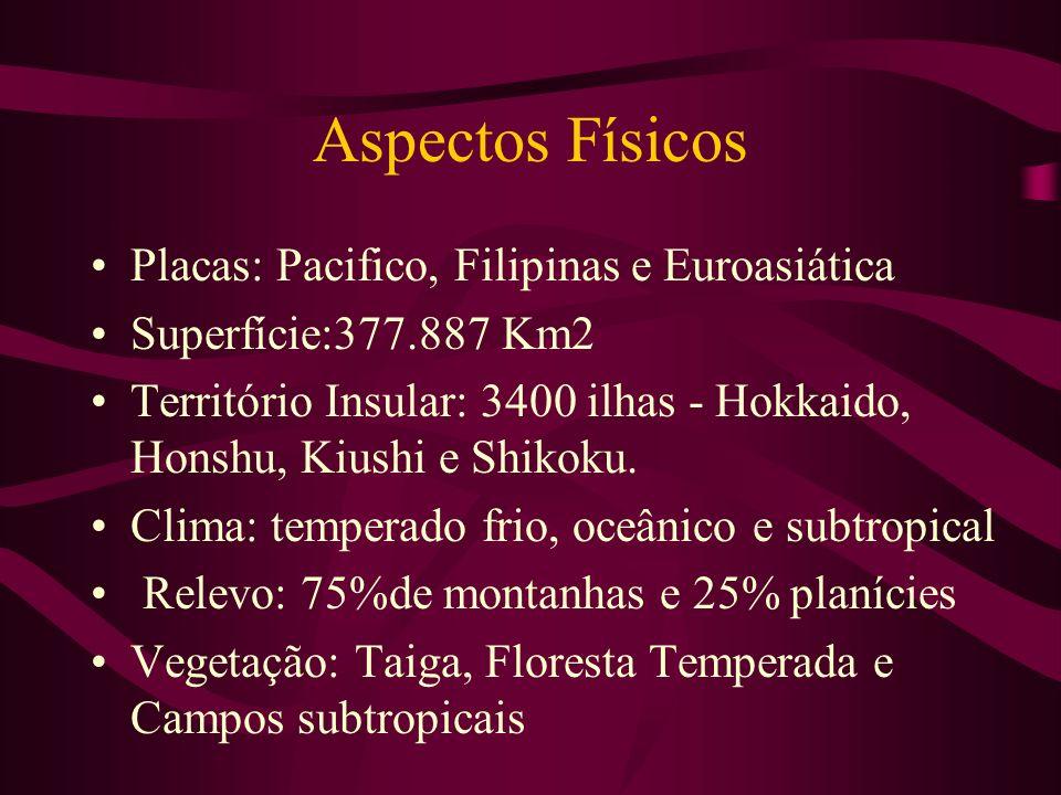 Aspectos Físicos Placas: Pacifico, Filipinas e Euroasiática Superfície:377.887 Km2 Território Insular: 3400 ilhas - Hokkaido, Honshu, Kiushi e Shikoku