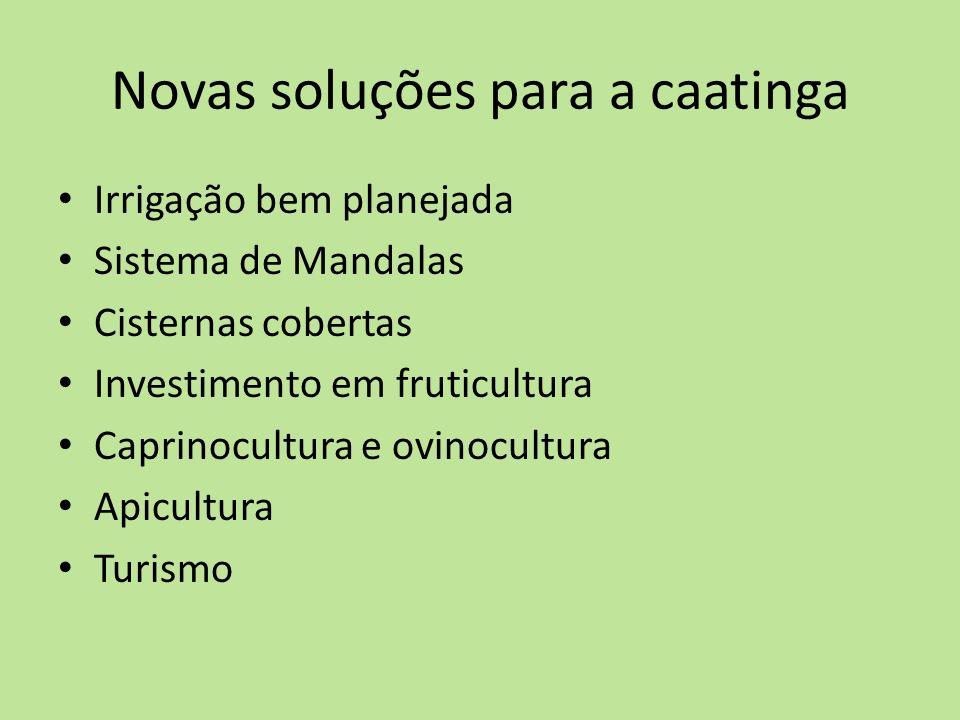 Novas soluções para a caatinga Irrigação bem planejada Sistema de Mandalas Cisternas cobertas Investimento em fruticultura Caprinocultura e ovinocultu