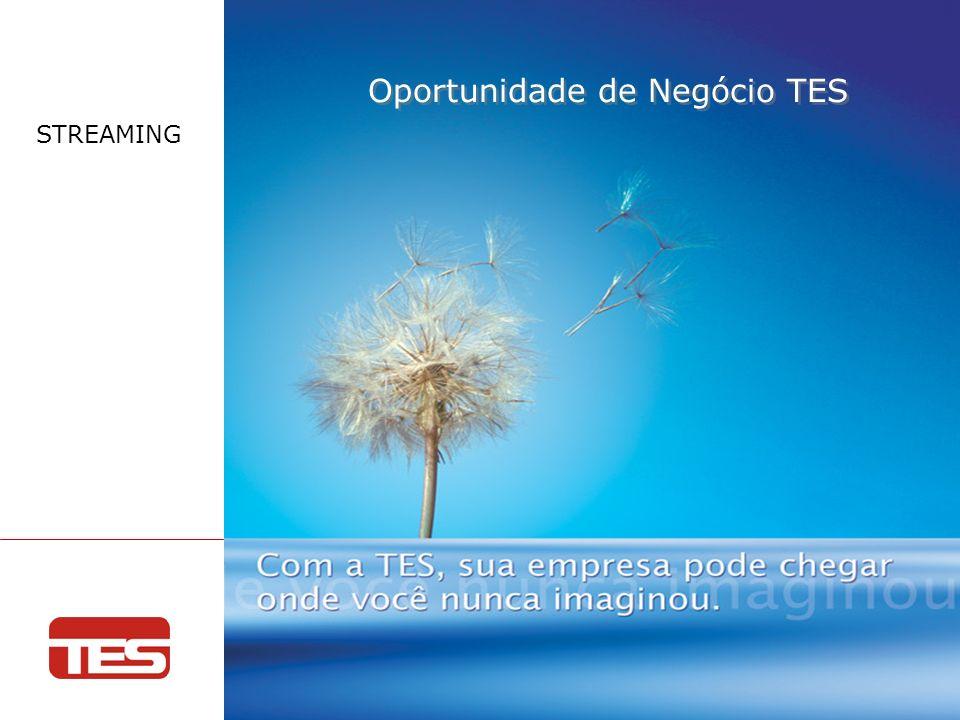 Reunião Semestral de Vendas Julho - 2009 Oportunidade de Negócio TES STREAMING