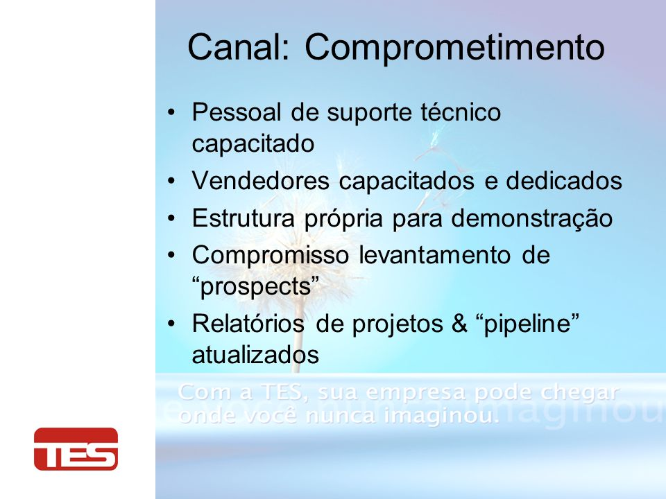Canal: Comprometimento Pessoal de suporte técnico capacitado Vendedores capacitados e dedicados Estrutura própria para demonstração Compromisso levantamento de prospects Relatórios de projetos & pipeline atualizados