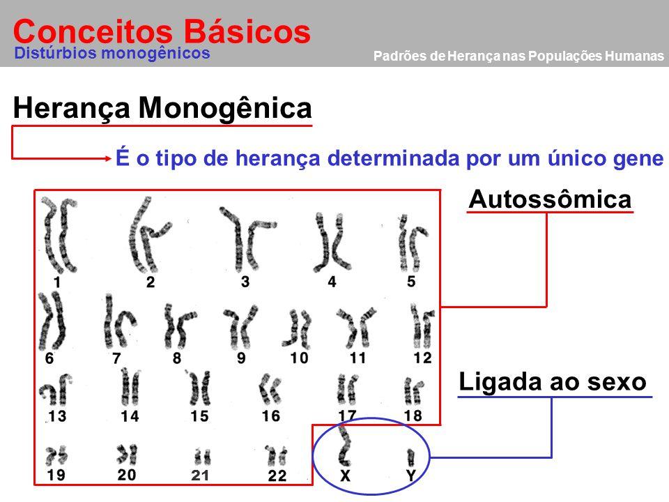 Padrões de Herança nas Populações Humanas Distúrbios Genéticos Distúrbios Monogênicos São determinados por um alelo especifico num único locus em um o